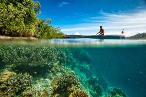 Gambar Kebijakan Perikanan Indonesia