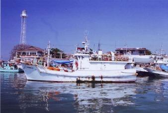 Gambar Ekonomi Perikanan Indonesia